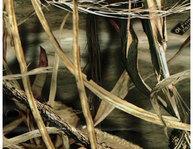 Фото Набор камуфляжных пленок на термооснове allen 6шт в упаковке цвет realtree max-4™