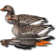 Комплект чучел гусей NRA FUD Greylag (Серый)