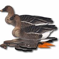 Фото комплект чучел гусей nra fud bean goose (гуменник)